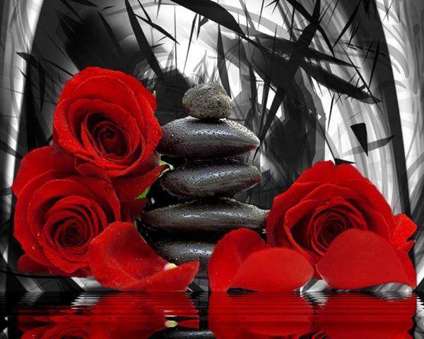 Roses+Stones